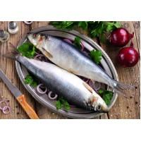 Zivju produkti *